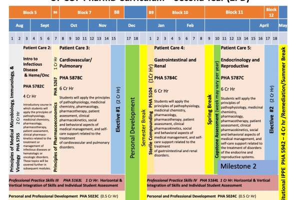 Diagram of Year 2 Curriculum